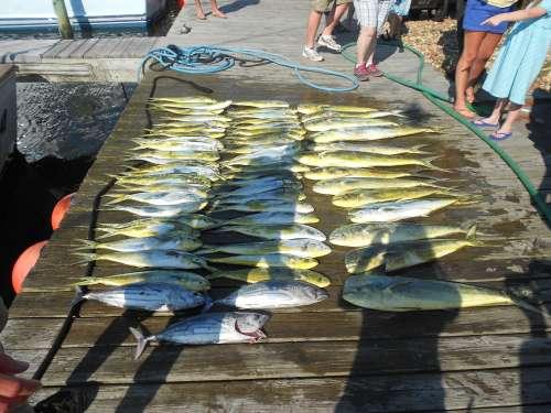 fishingreport_027.jpg
