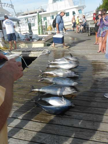 fishingreport_038.jpg