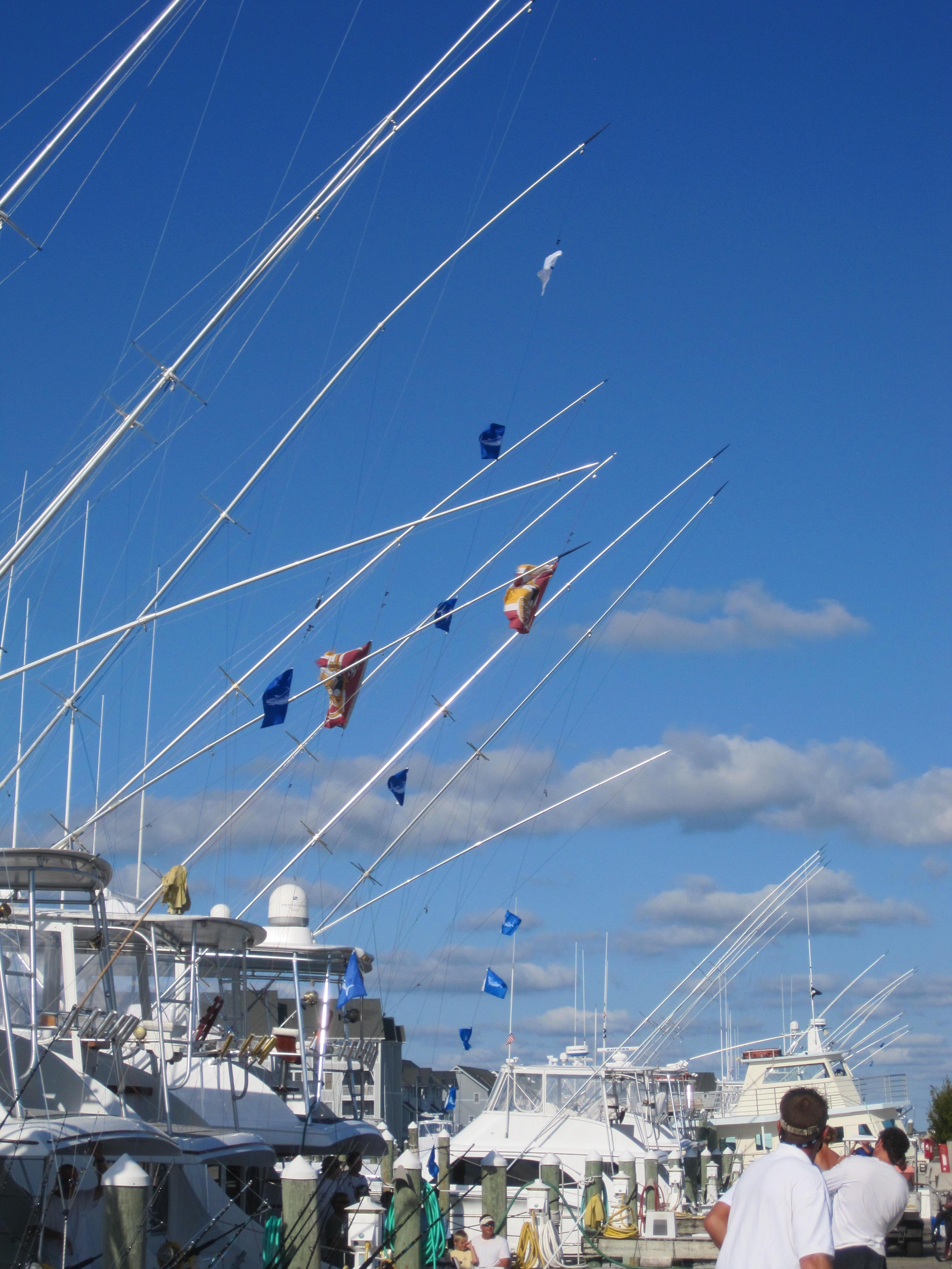 pcbgtday2flags.jpg