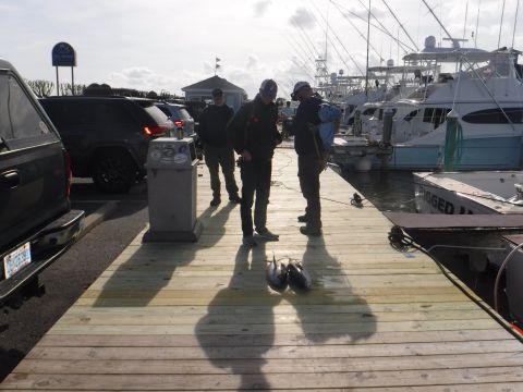 fishingreport_2860