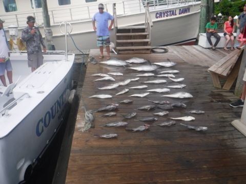 fishingreport_3083