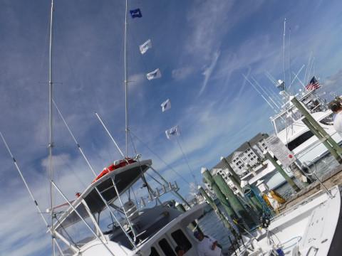 FishingReport_185