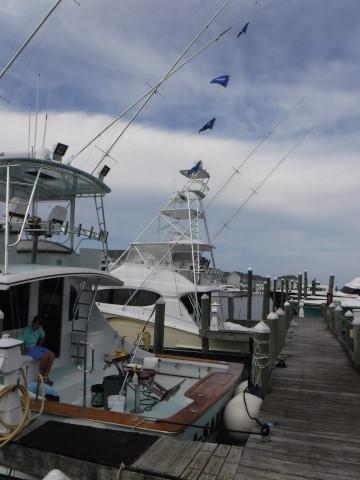FishingReport_415