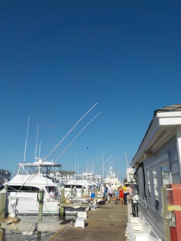 FishingReport_506