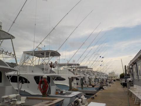FishingReport_532