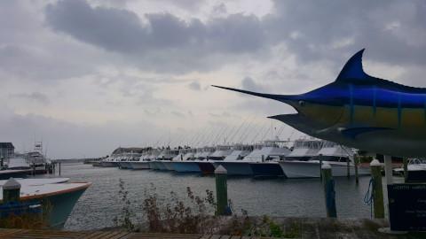 FishingReport_604