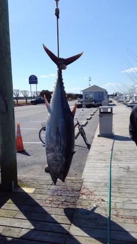 FishingReport_628
