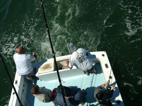FishingReport_663