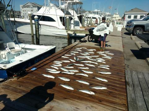 FishingReport_664