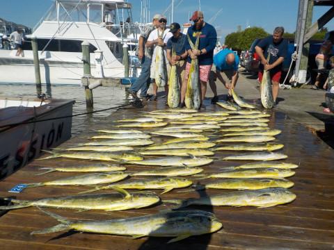 FishingReport_735