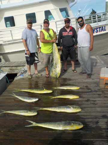 FishingReport_908