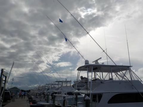 FishingReport_910