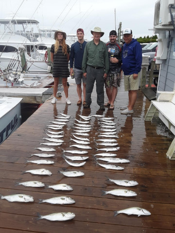 FishingReport_933