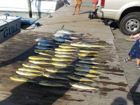 FishingReport_1104