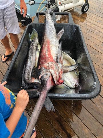 FishingReport_1171
