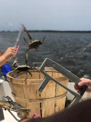 FishingReport_1218