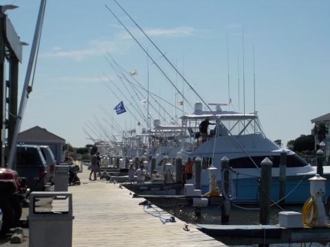 FishingReport_1226