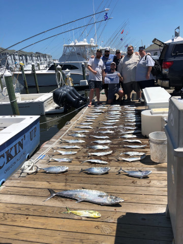 FishingReport_1331
