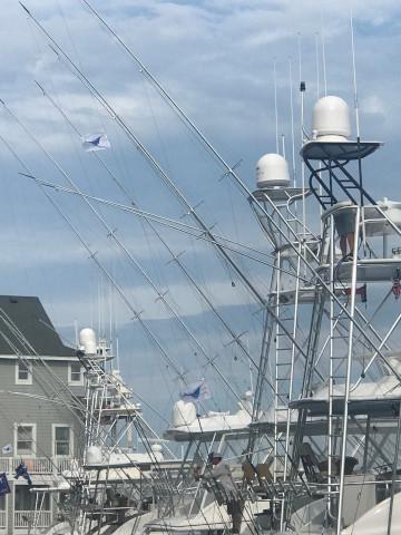 FishingReport_1335