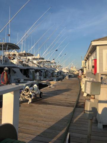 FishingReport_1418