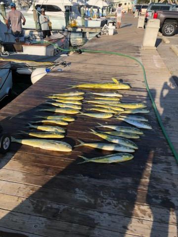 FishingReport_1420