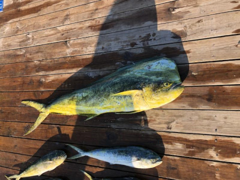 FishingReport_1422