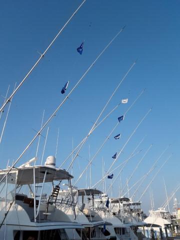 FishingReport_1426
