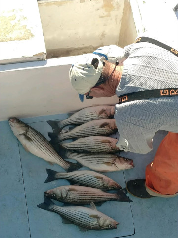 FishingReport_1523