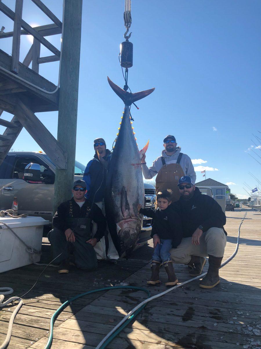 shortrigger bluefin 012520